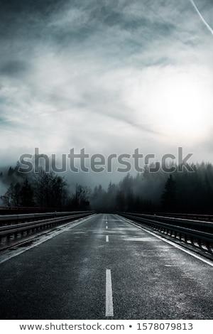 туманный горные дороги дерево лес закат Сток-фото © hsfelix