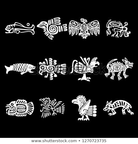 古代 · 化石 · 顎 · 骨 · 5 · 年 - ストックフォト © popaukropa
