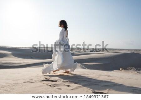arabian woman traveling in desert stock photo © artfotodima