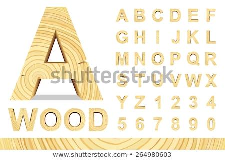 Fából készült ábécé fa retro betűtípus levelek Stock fotó © Andrei_