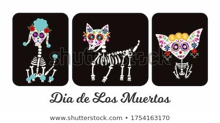 Dia De Los Muertos Concept Stock photo © Anna_leni