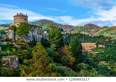 marrón · Italia · vista · verano · castillo · piedra - foto stock © boggy