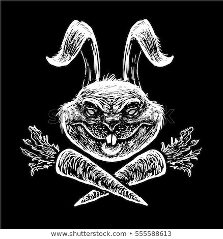 Colère cartoon lapin illustration regarder Photo stock © cthoman