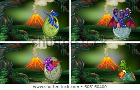 4 恐竜 卵 実例 森林 卵 ストックフォト © colematt