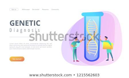genético · teste · aplicativo · interface · modelo · cientistas - foto stock © RAStudio