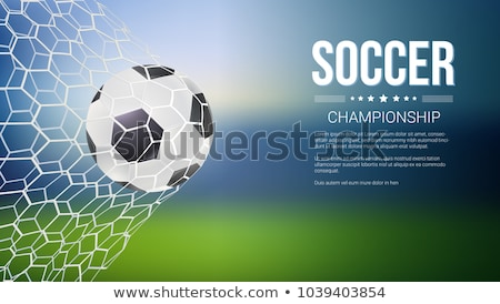3D gate for playing soccer, vector illustration. stock photo © kup1984