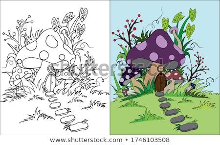 Cogumelo casa mata ilustração árvore natureza Foto stock © colematt
