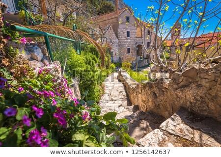Mediterrán öreg kő kilátás régió Horvátország Stock fotó © xbrchx