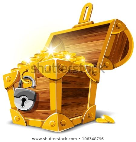 pirate with treasure chest cartoon illustration Stock photo © izakowski