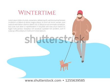 Walking in Wintertime Woman with Small Dog Vector Stock photo © robuart