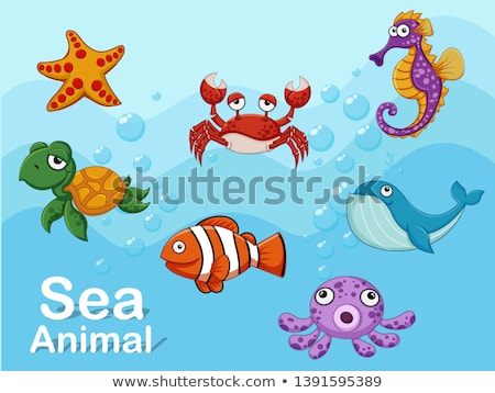 Sea creature frame template Stock photo © colematt