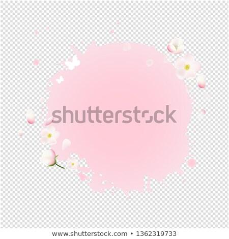 розовый пятно цветы продажи баннер прозрачный Сток-фото © cammep