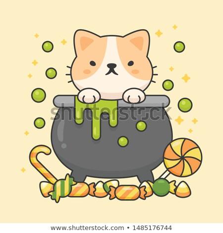 ベクトル 文字 かわいい 猫 毒 ポット ストックフォト © amaomam