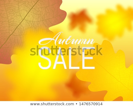 Autumn poster with yellow autumn maple and oak falling leaves. Banner Autumn Sale blured template Stock photo © Iaroslava