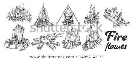 Gyűjtemény különböző tábortűz tinta szett vektor Stock fotó © pikepicture