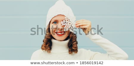 Stock photo: winter eye