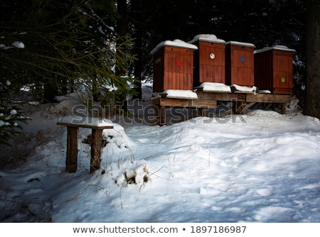 beehive, Slovakia Stock photo © phbcz