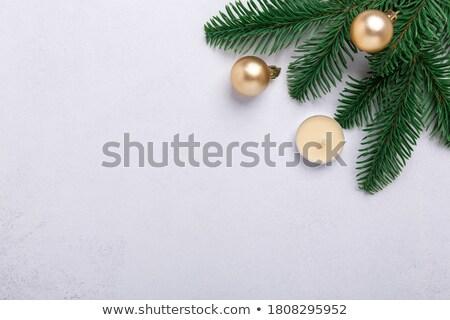 Karácsony fenyőfa kő háttér ág fedett Stock fotó © karandaev