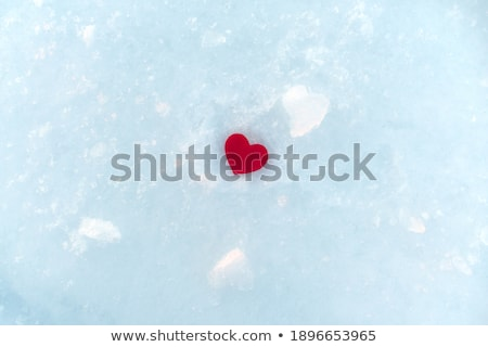 love concept red heart among ice stock photo © arsgera