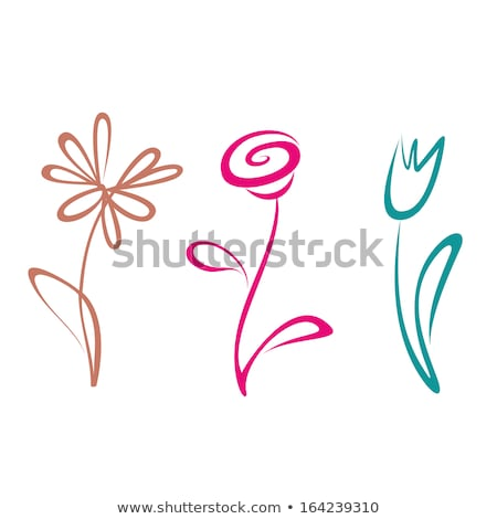Rose. Outline icon in a circle. Flower vector illustration Stock photo © Imaagio