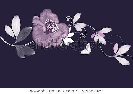 Résumé vecteur floral fleur art noir Photo stock © rioillustrator