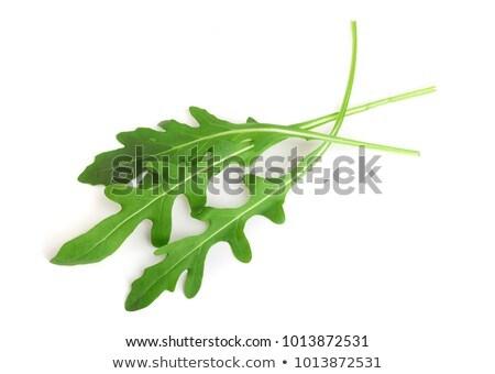 Three green fresh rucola or arugula leaves. Stock photo © marylooo