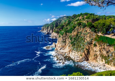 Detail of the Spanish coast  Stock photo © digoarpi