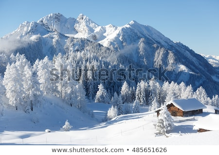 winter landscape with a view of the mountain peak and hut in the stock photo © kotenko