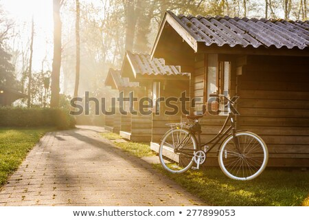 Log cabin in the morning mist Stock photo © lovleah
