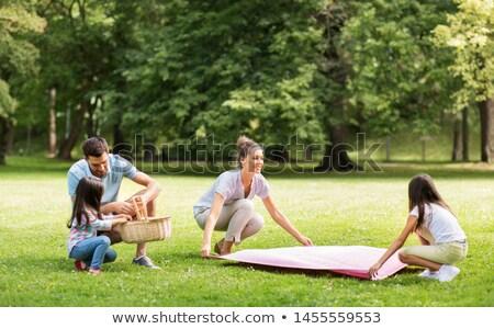 Familie picknickdeken zomer park recreatie Stockfoto © dolgachov