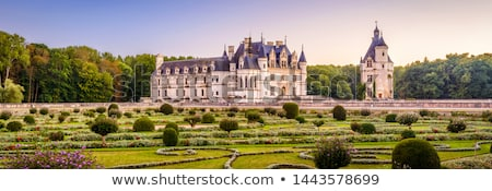 Chenonceau castle with garden, France Stock photo © neirfy