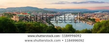 Cityscape Of Budapest The Danube Bridge Stock fotó © givaga