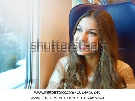 Reizen comfortabel trein business zomer Stockfoto © photocreo