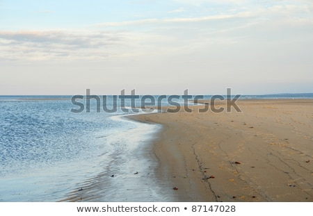 idyllic Crane Beach at evening time Stock photo © prill