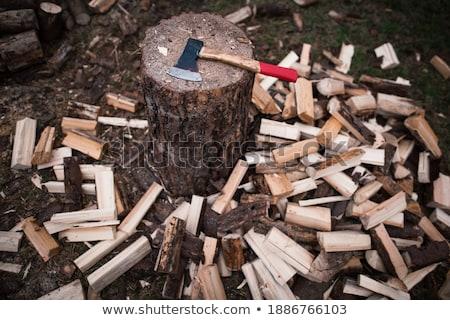 Vág tűzifa fa munka energia üzemanyag Stock fotó © Kheat