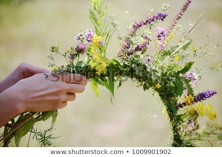 Stockfoto: Mooie · vrouw · krans · bloemen · hoofd · voorjaar · gezicht
