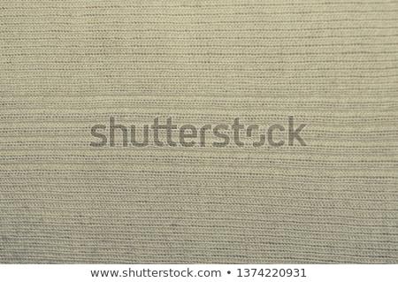 light grey place mat Stock photo © Digifoodstock