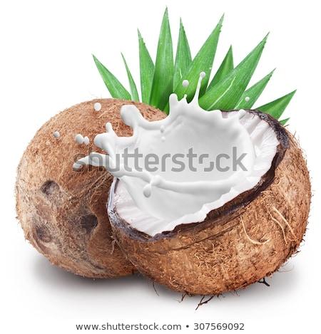ストックフォト: ココナッツ · フルーツ · ミルク · スプラッシュ · ヤシの木