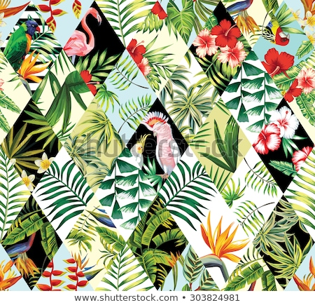 set of Seamless decorative pattern with flamingo, toucan and tr Stock photo © Margolana