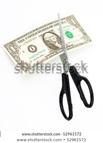 Scissors cuts one american dollar note isolated Stock photo © ozaiachin