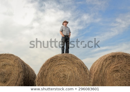 Attractive Young Man Standing on a Bale of Hay stock photo © iofoto