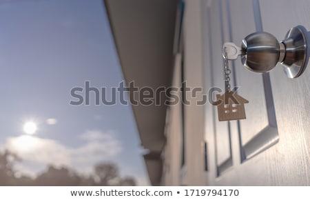 branco · porta · preto · metal · manusear - foto stock © morrbyte