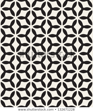Concentric mesh pattern. Stock photo © Leonardi