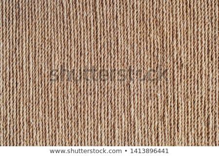 Rough rope background  Stock photo © IMaster
