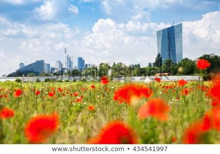 Sziluett Frankfurt mezők előtér felhők város Stock fotó © meinzahn