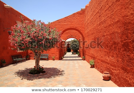 the cloister of Arequipa Stock photo © njaj