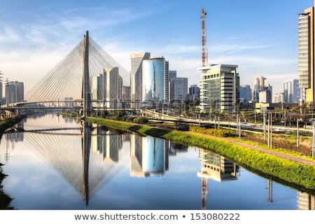 Sao Paulo şehir dünya binalar kentsel Stok fotoğraf © compuinfoto