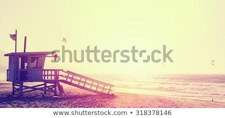 Guarding at sunset Stock photo © rmbarricarte