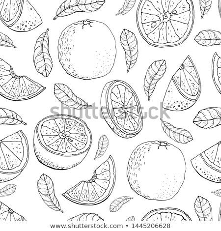 Fruit groet illustratie geïsoleerd voedsel natuur Stockfoto © get4net
