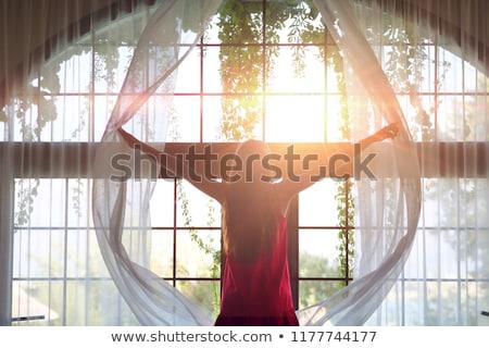 Foto ragazza la luce naturale moda modello Foto d'archivio © tekso